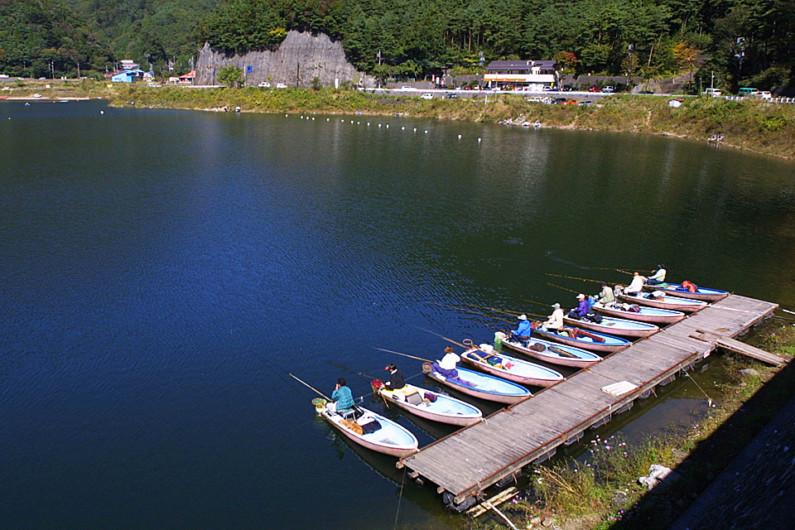 富士五湖の一つ、精進湖のへらぶな釣りです。精進湖は、富士五湖の中で、一番早くへらぶな釣りのポイントが開拓されました。湖の釣りの原点と言ってもいいところです。富士五湖は、ほかに西湖、山中湖、河口湖でもへら鮒が釣れます