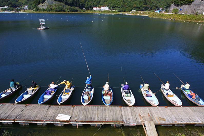 富士五湖のへらぶな釣りは精進湖から始まりました。6m以上の長竿で深場を釣る豪快なへらぶな釣りが楽しめます