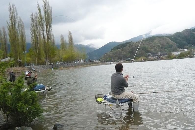 でっぷりと太った大型が河口湖のへら。管理釣り場のへらぶな釣りでは絶対に味わえない魅力があります