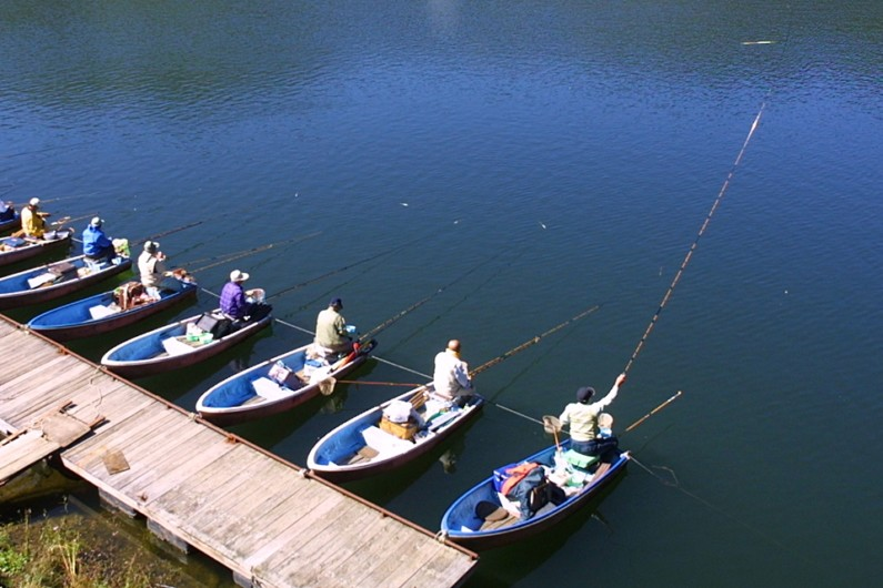 21尺ほどの長竿を振る釣り人が並んでいます。写真の竿先を注意してみると、ウキがそこにあります。ほぼ、いっぱい(チョウチン)の釣りになっていることがわかります。このポイントは深く、10m近くの水深があります